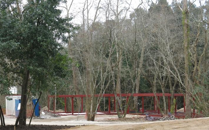 Selva Asturiana ESTUDIO BHER 5
